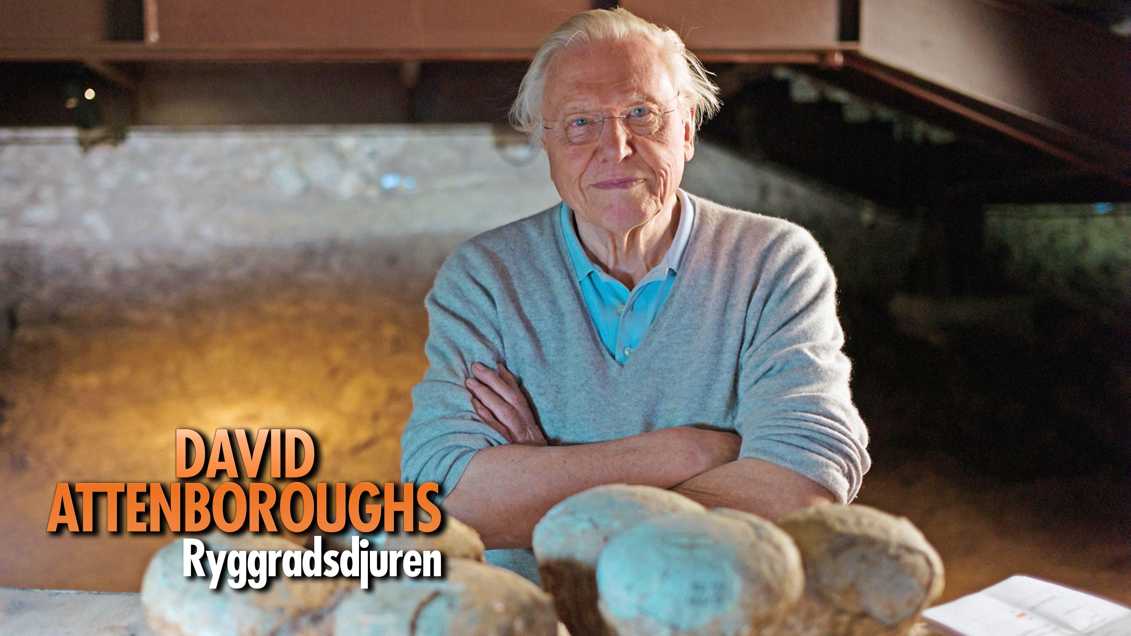 David Attenboroughs Ryggradsdjuren