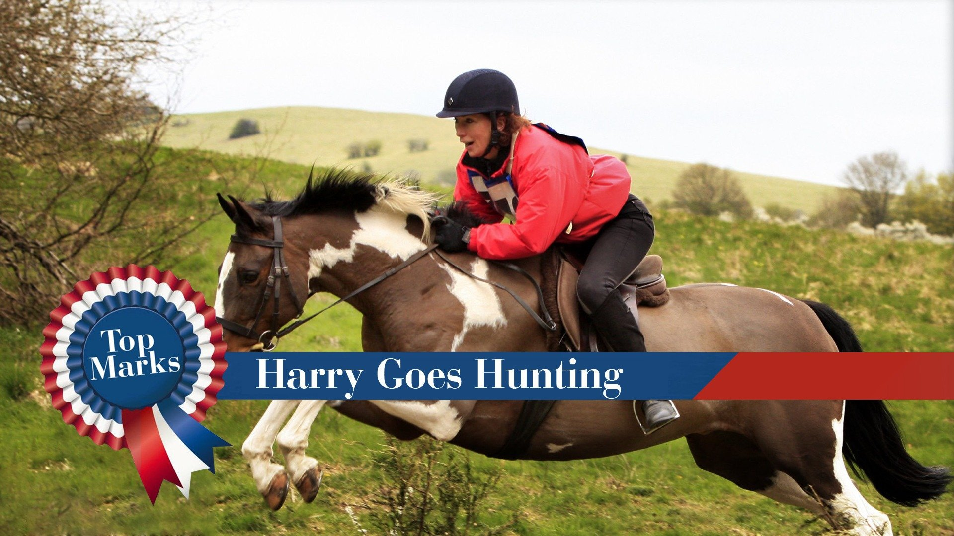 Top Marks: Harry Goes Hunting