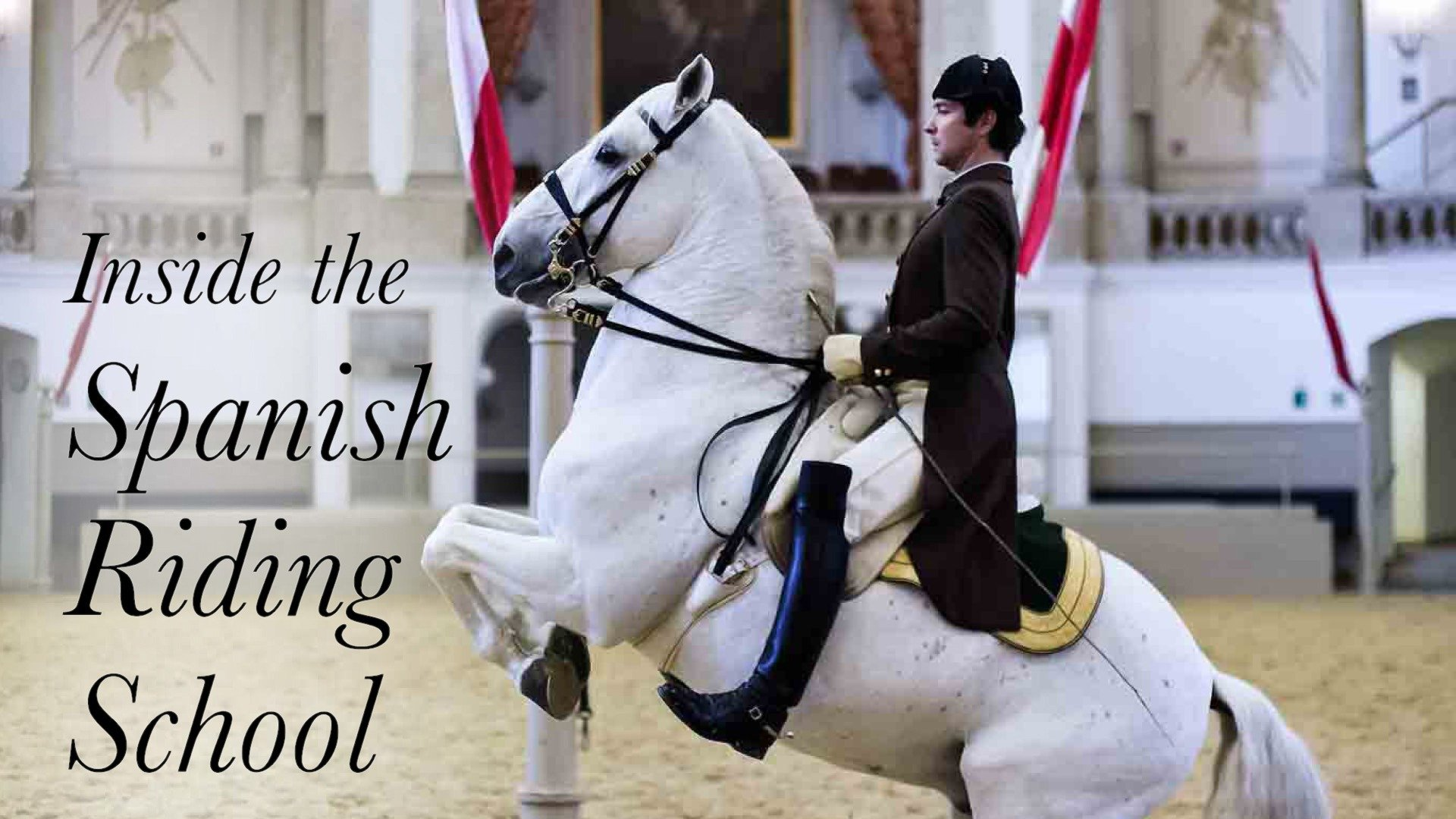 Inside the Spanish Riding School