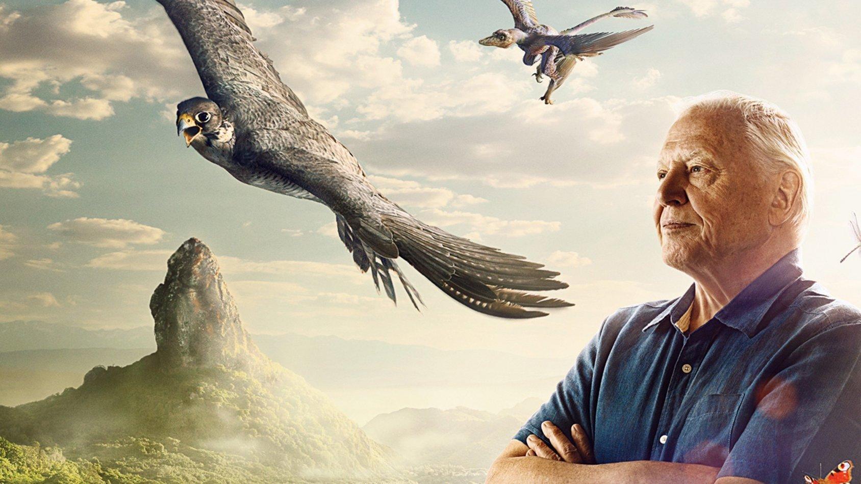 David Attenboroughs Konsten att flyga