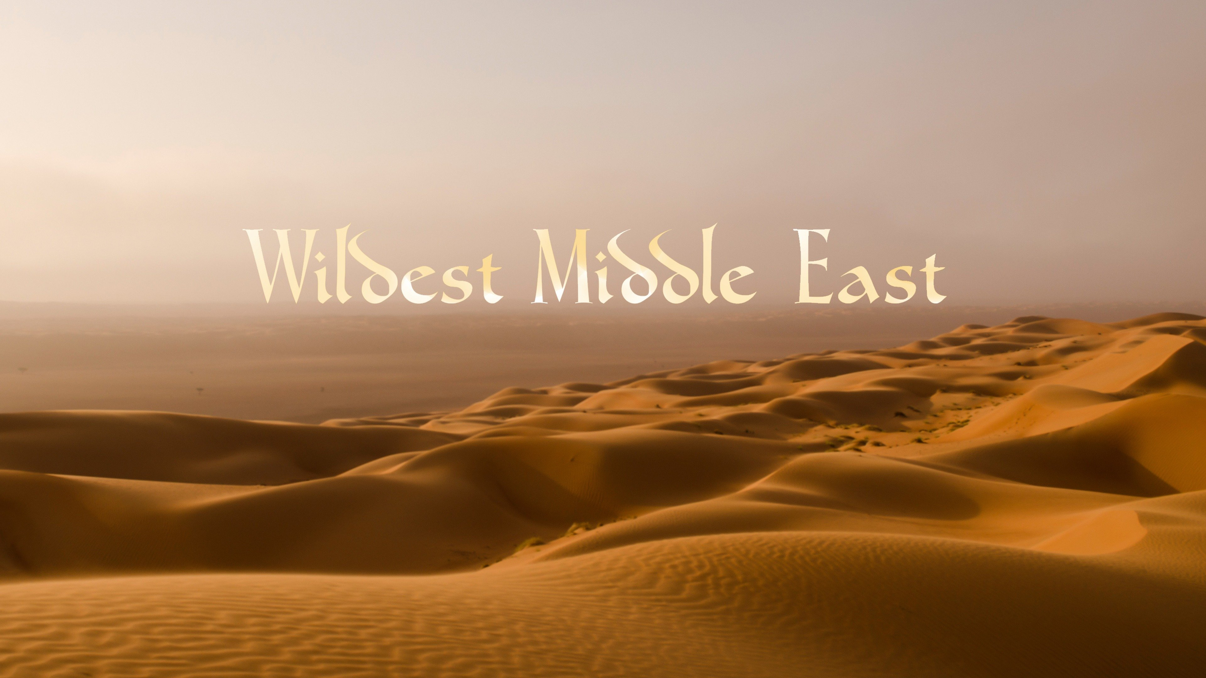 Wildest Middle East