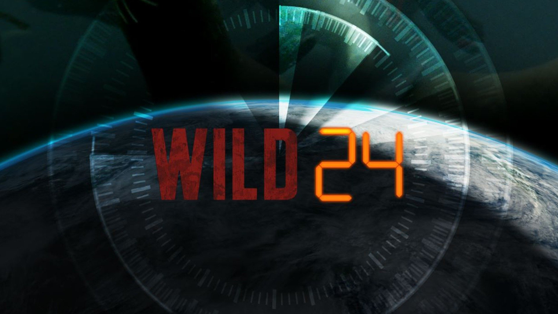 Wild 24