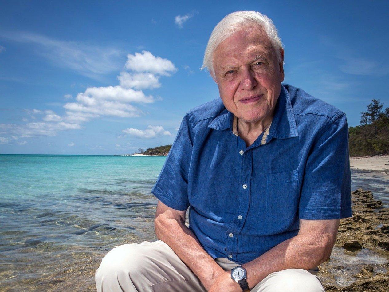Stora barriärrevet med David Attenborough