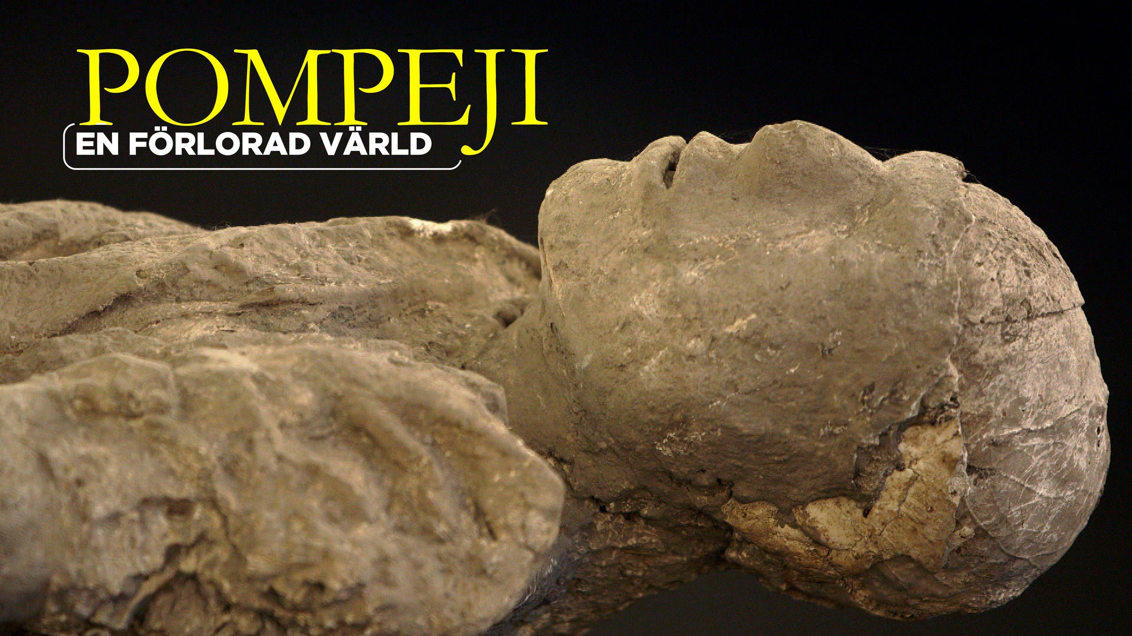 Pompeji - En förlorad värld