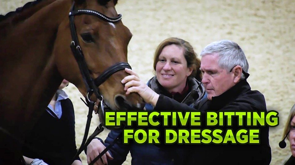 Effective Bitting for Dressage