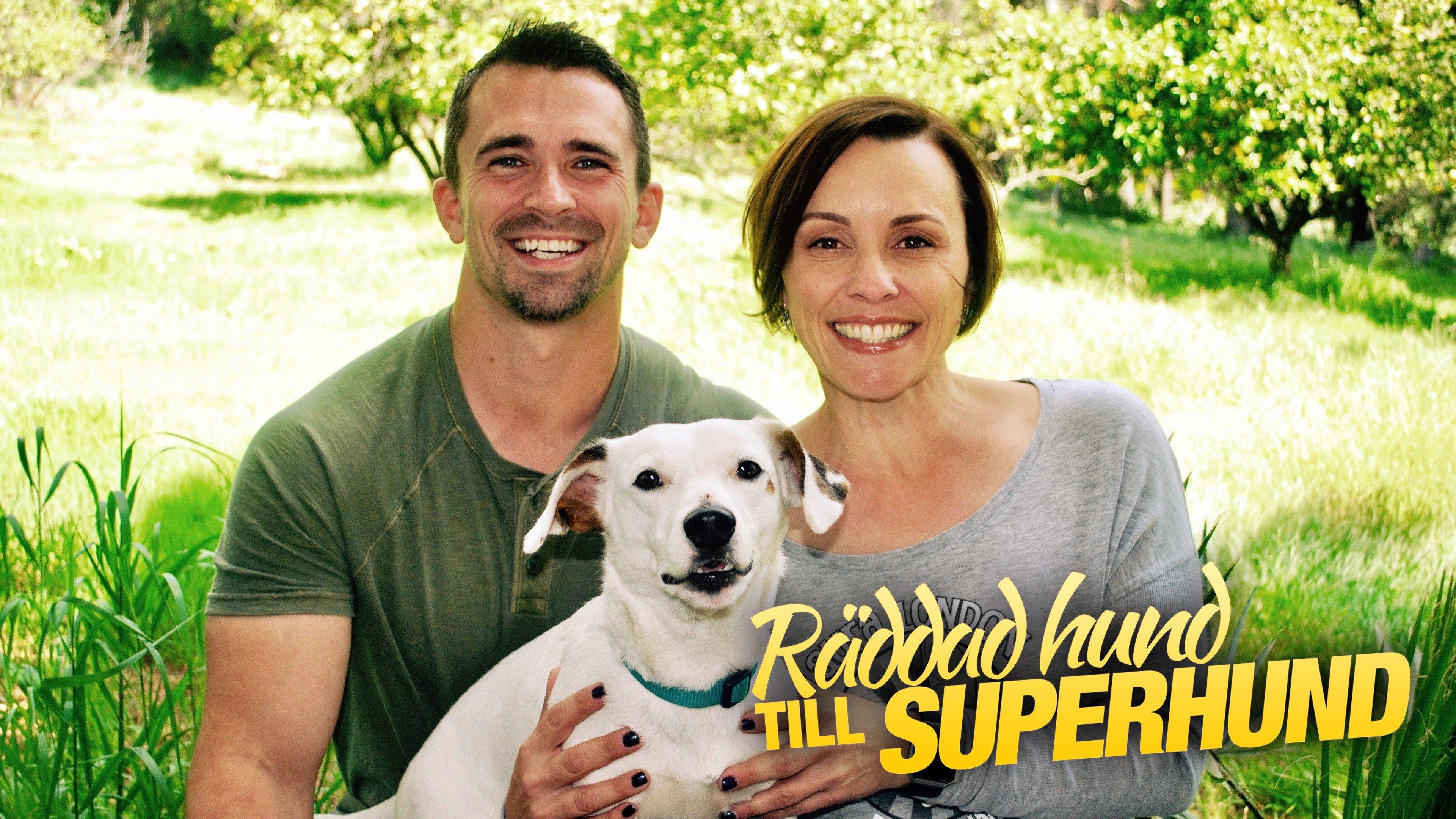 Räddad hund till superhund