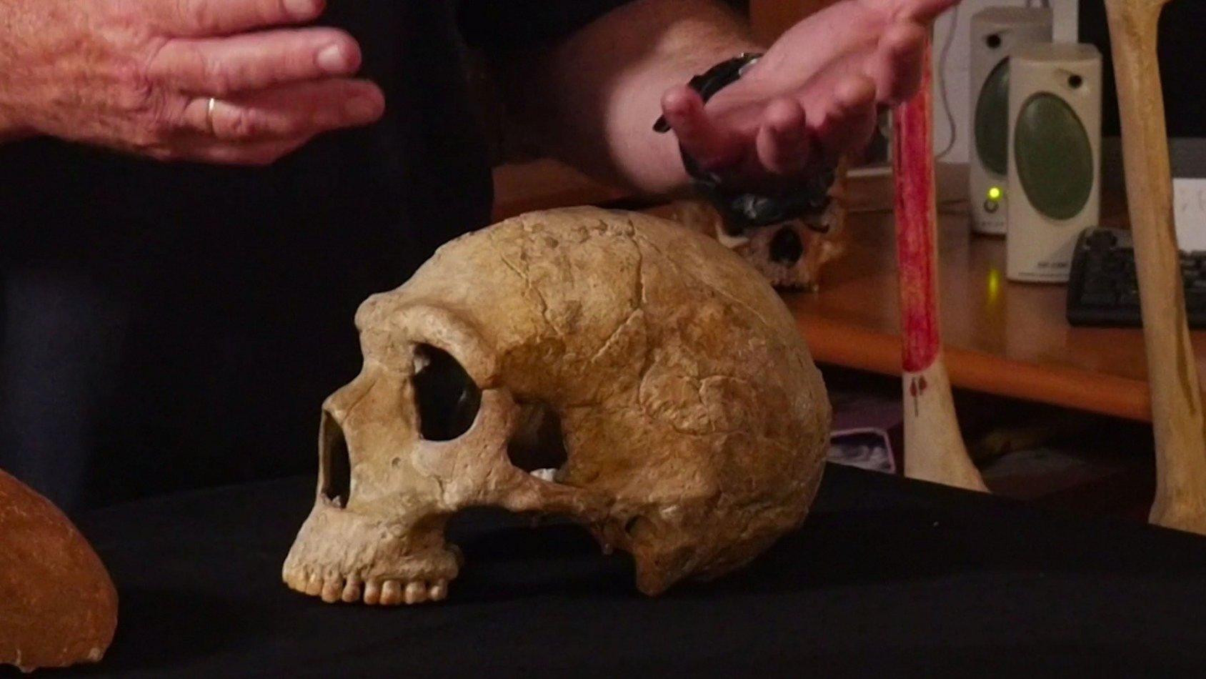 The Manot Skull