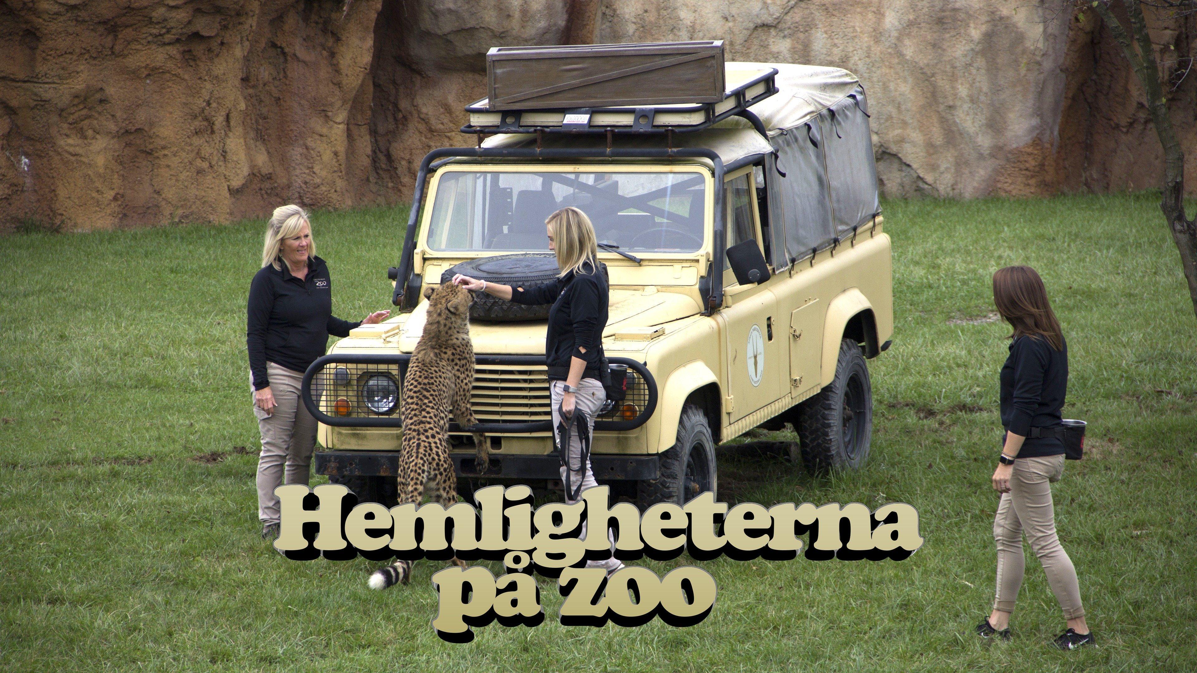 Hemligheterna på zoo