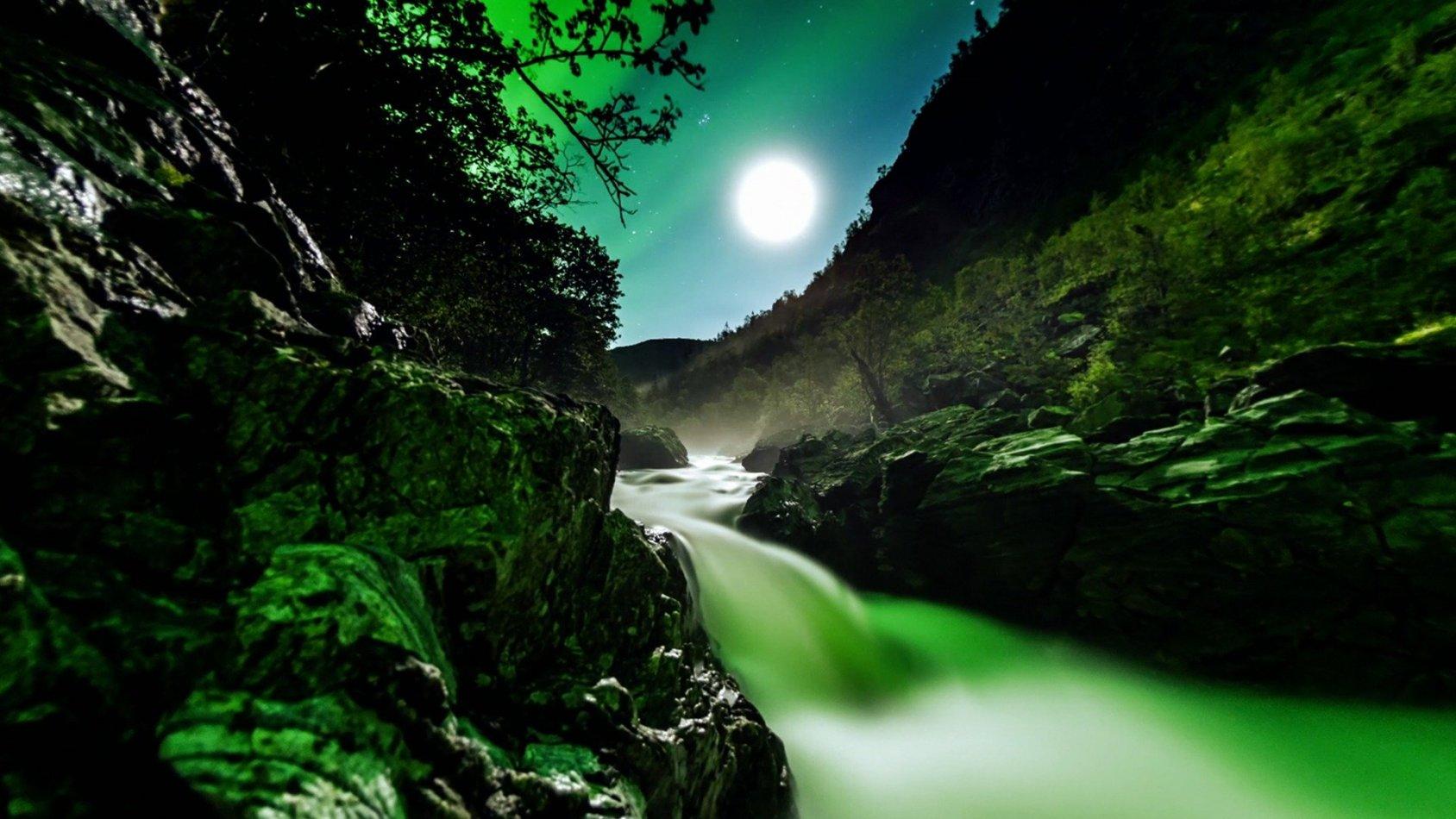 The Norwegian Fjords