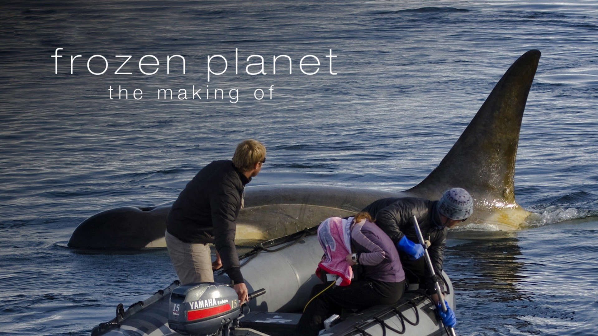 Frozen Planet: The Making Of