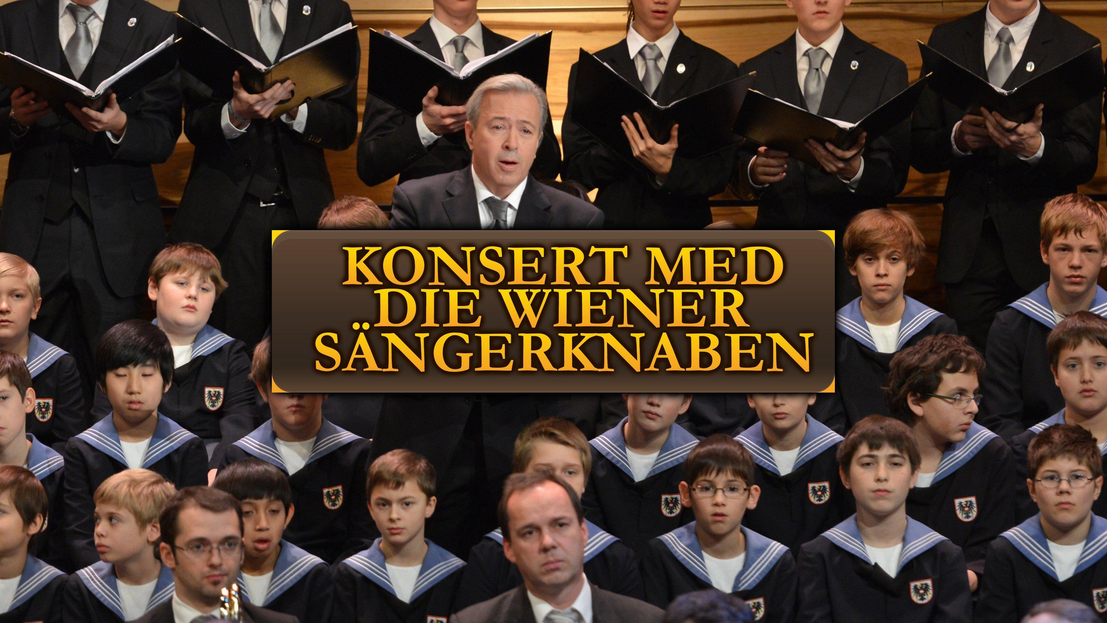 Konsert med Die Wiener Sängerknaben