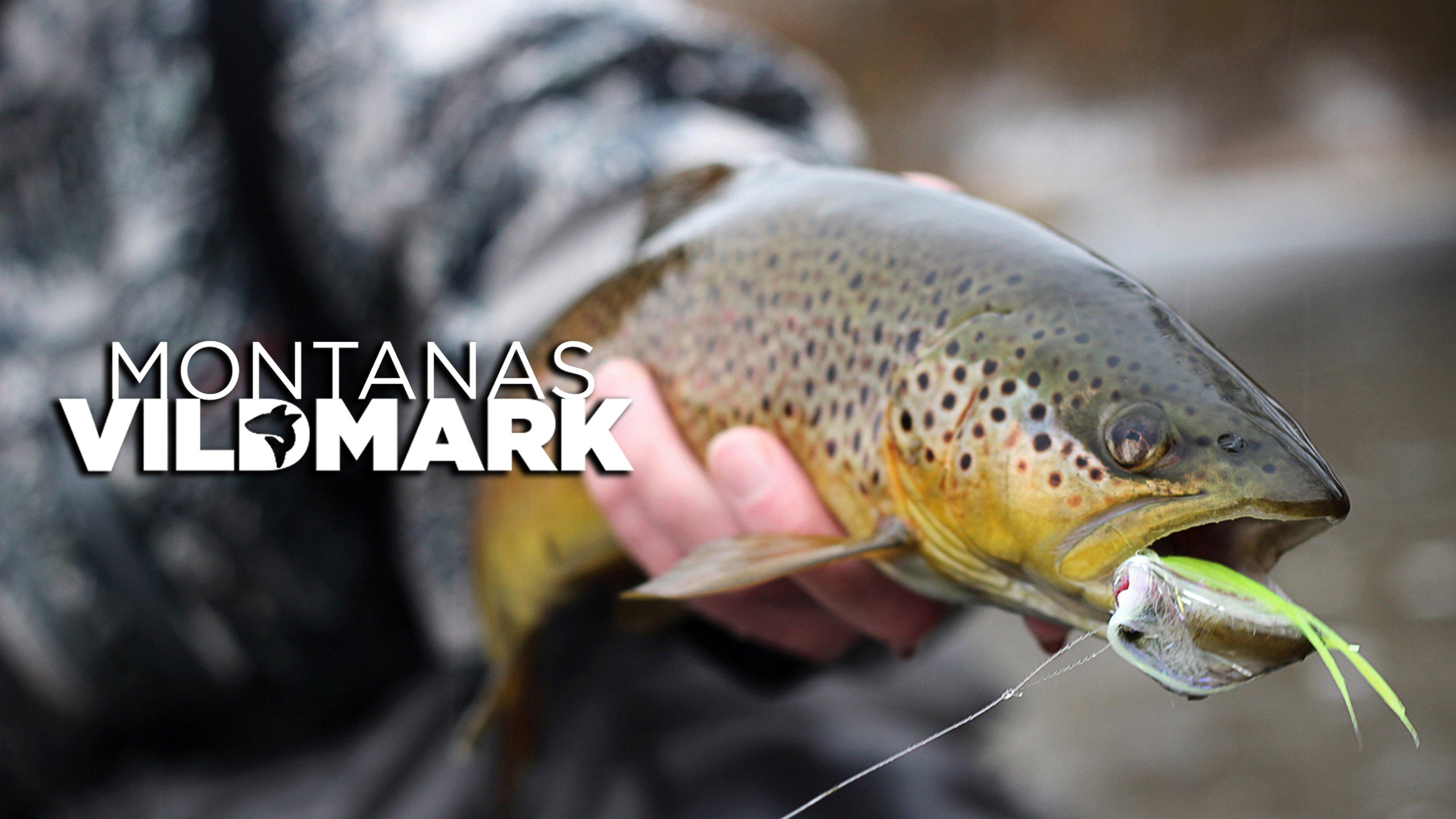 Montanas vildmark