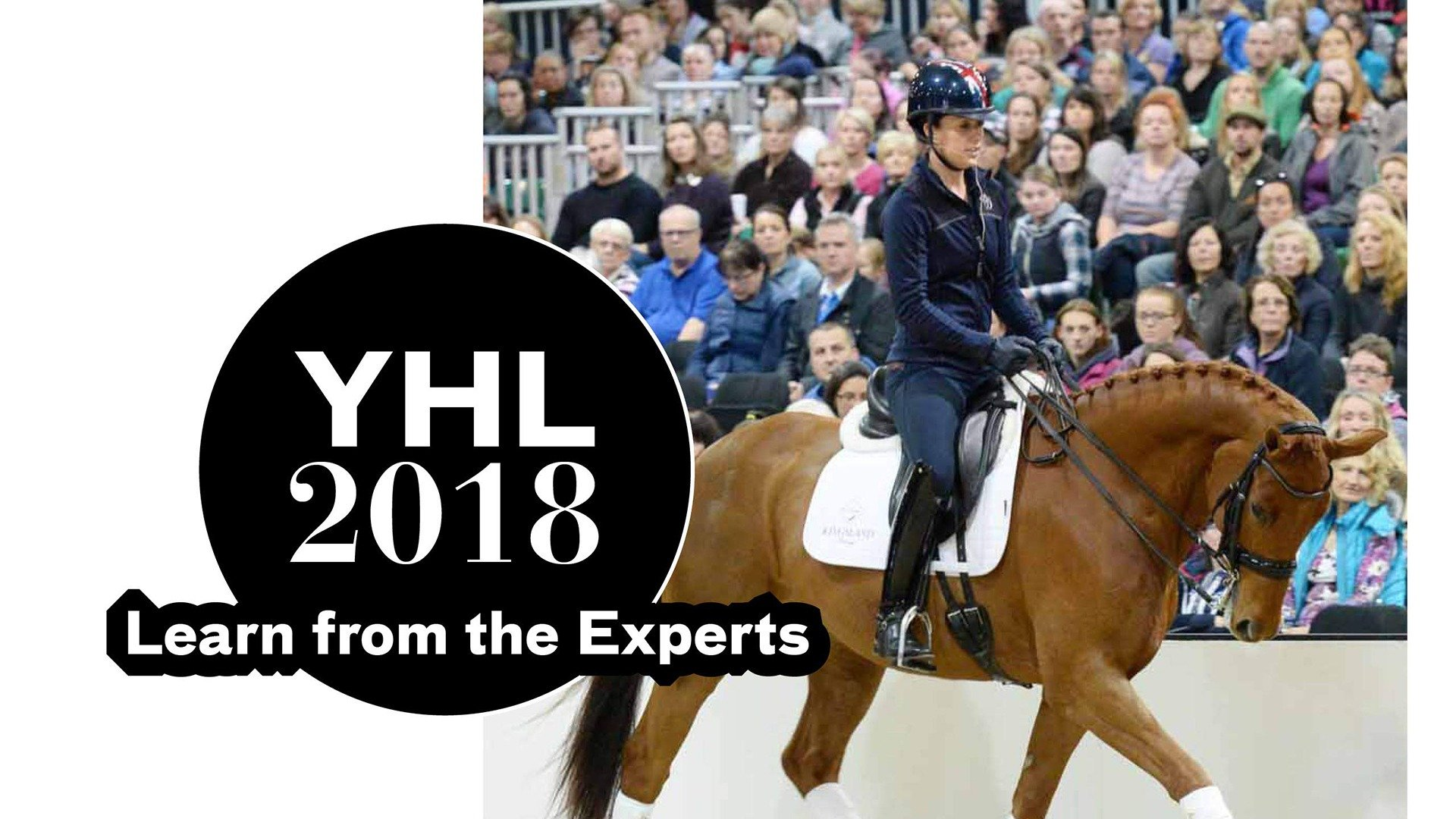 YHL 2018: Learn from the Experts