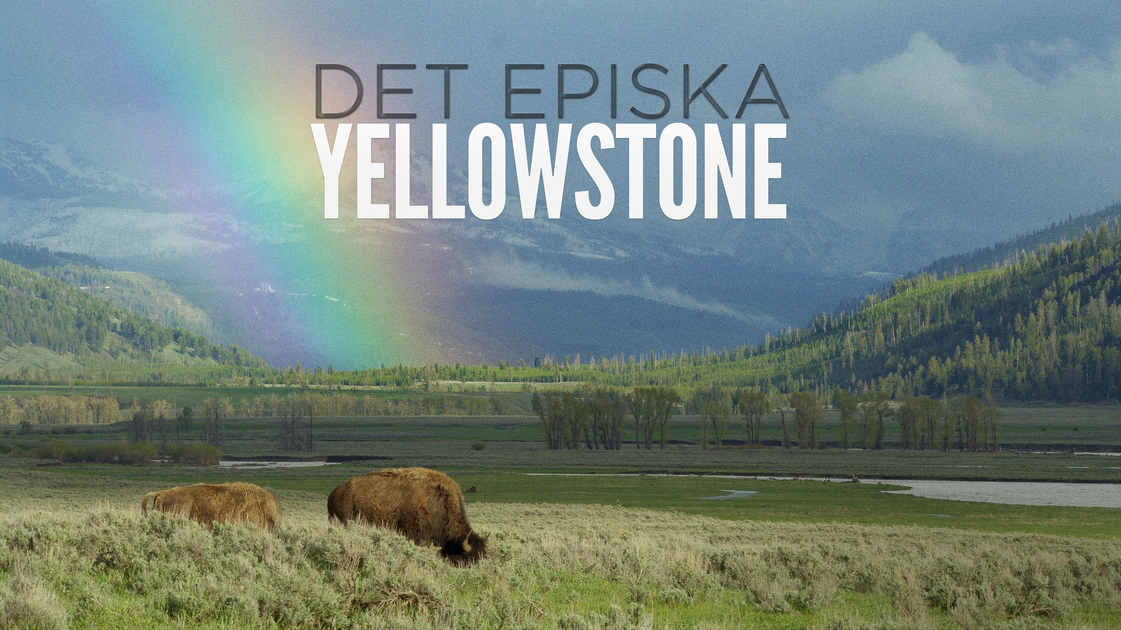 Det episka Yellowstone