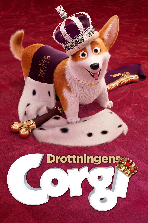 Drottningens corgi
