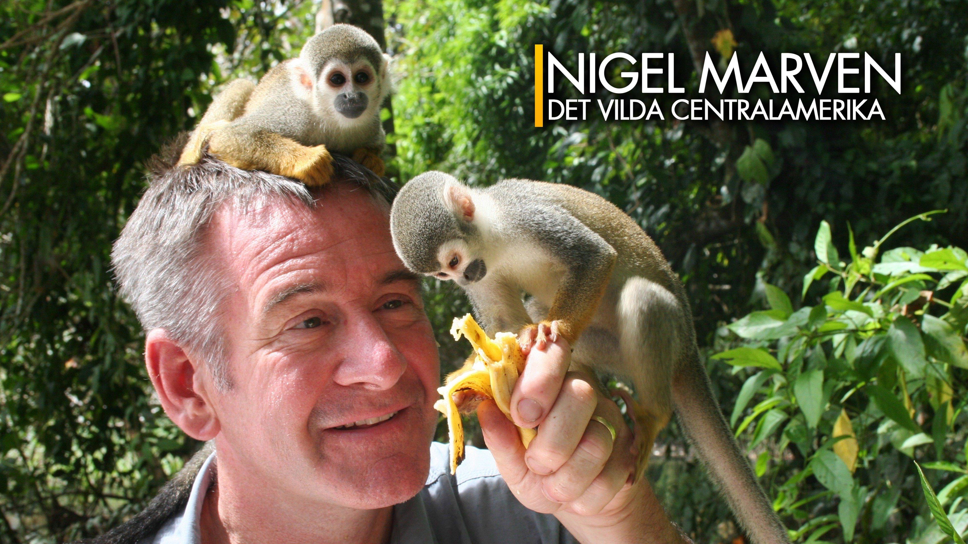 Nigel Marven: det vilda Centralamerika