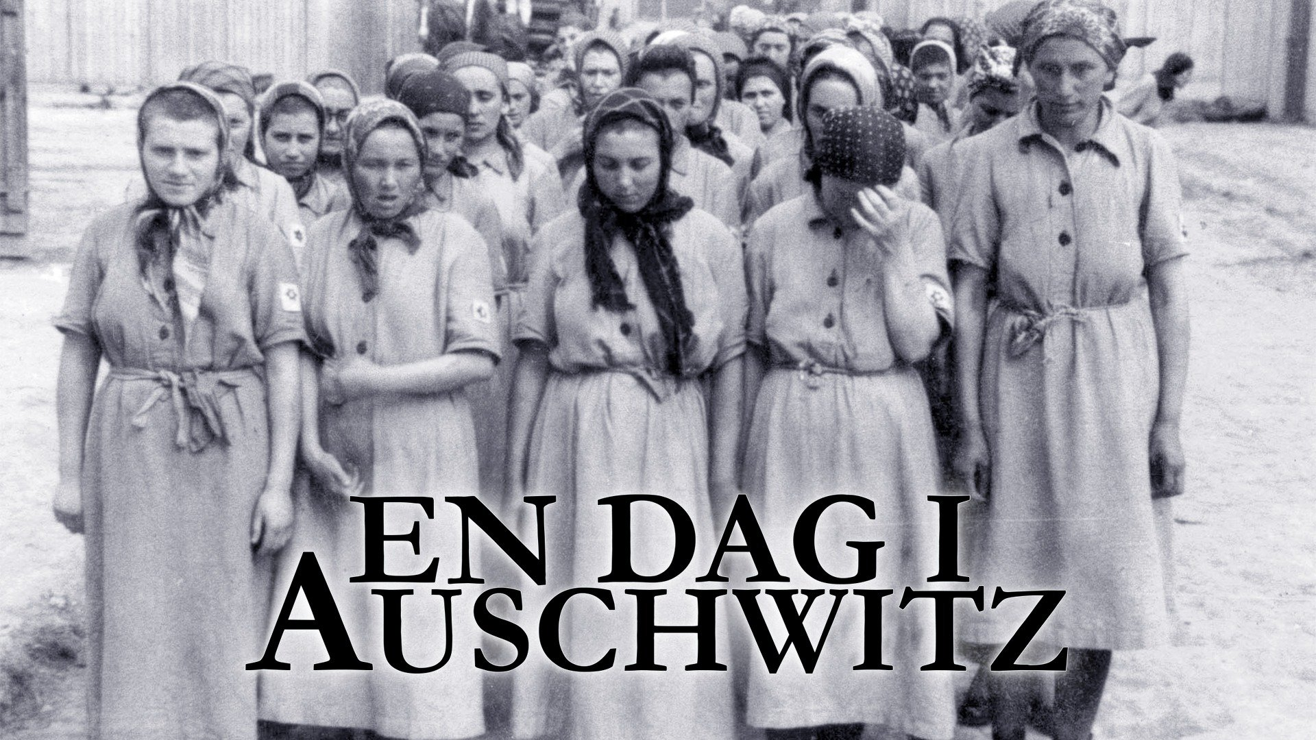 En dag i Auschwitz