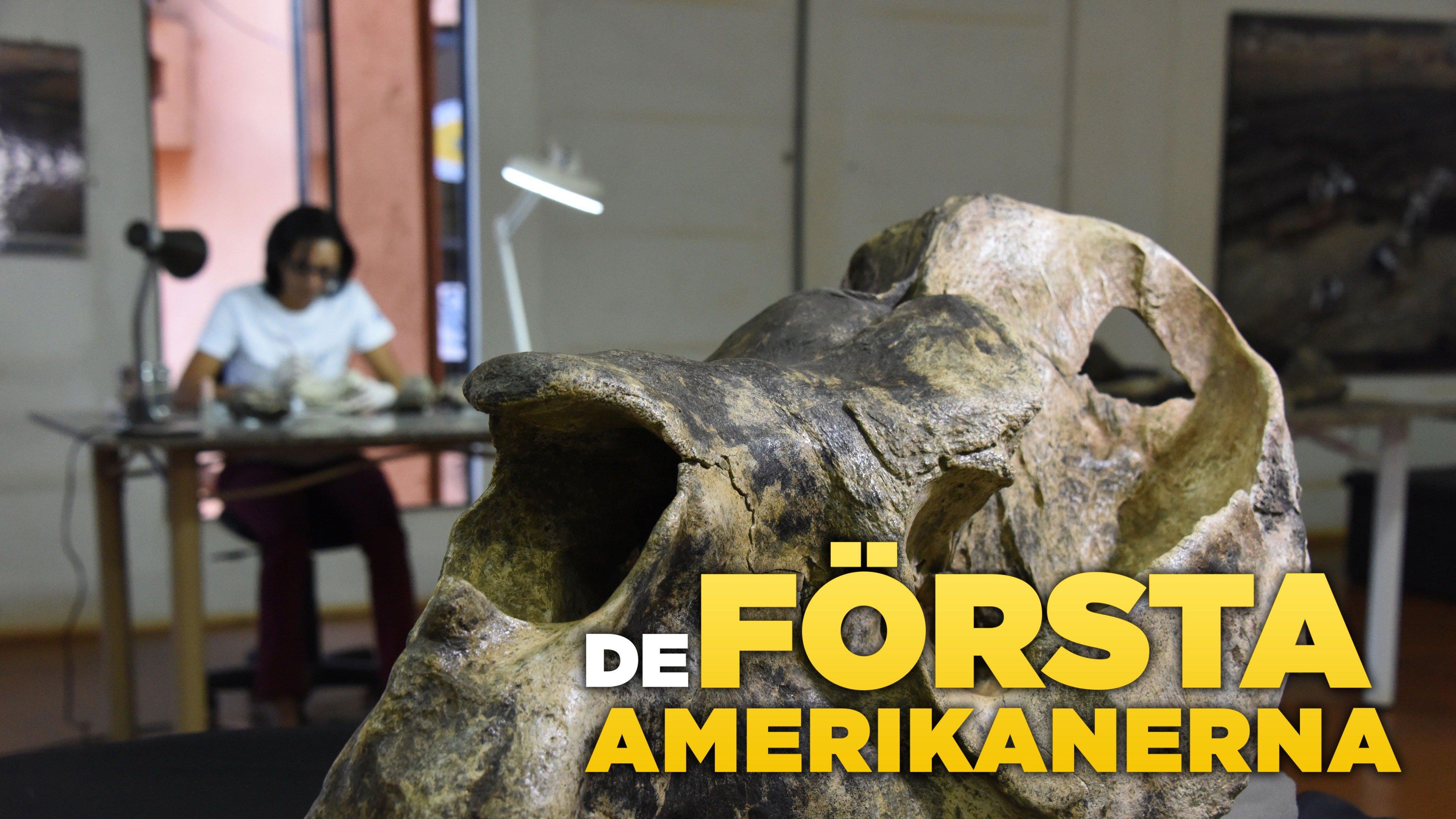 De första amerikanerna