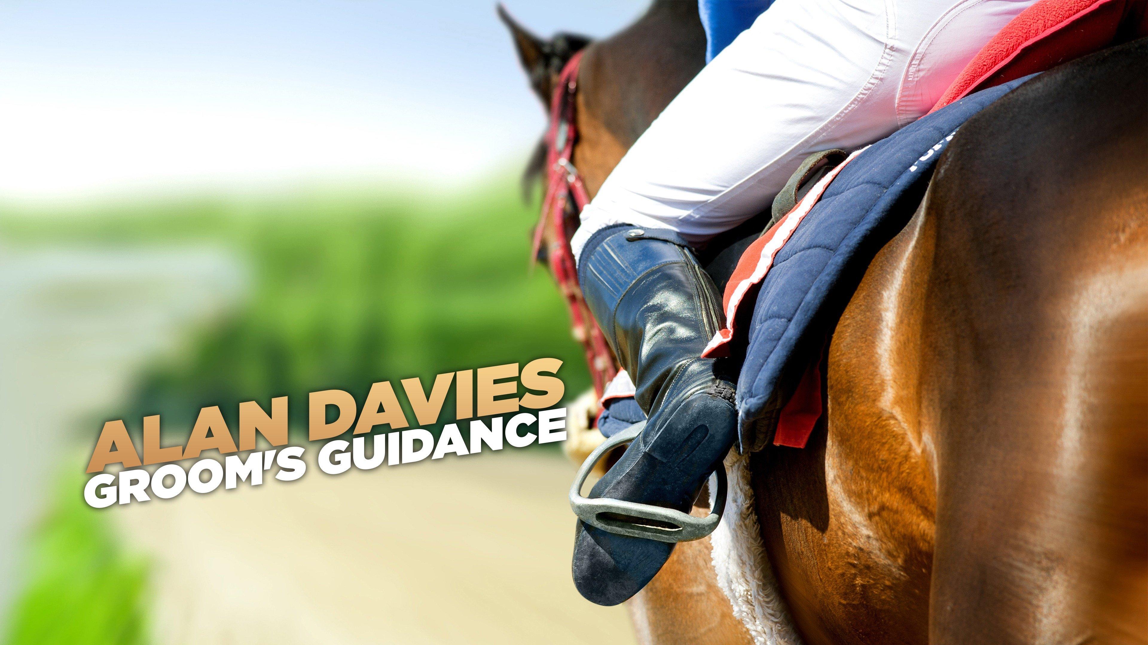 Alan Davies: Groom's Guidance