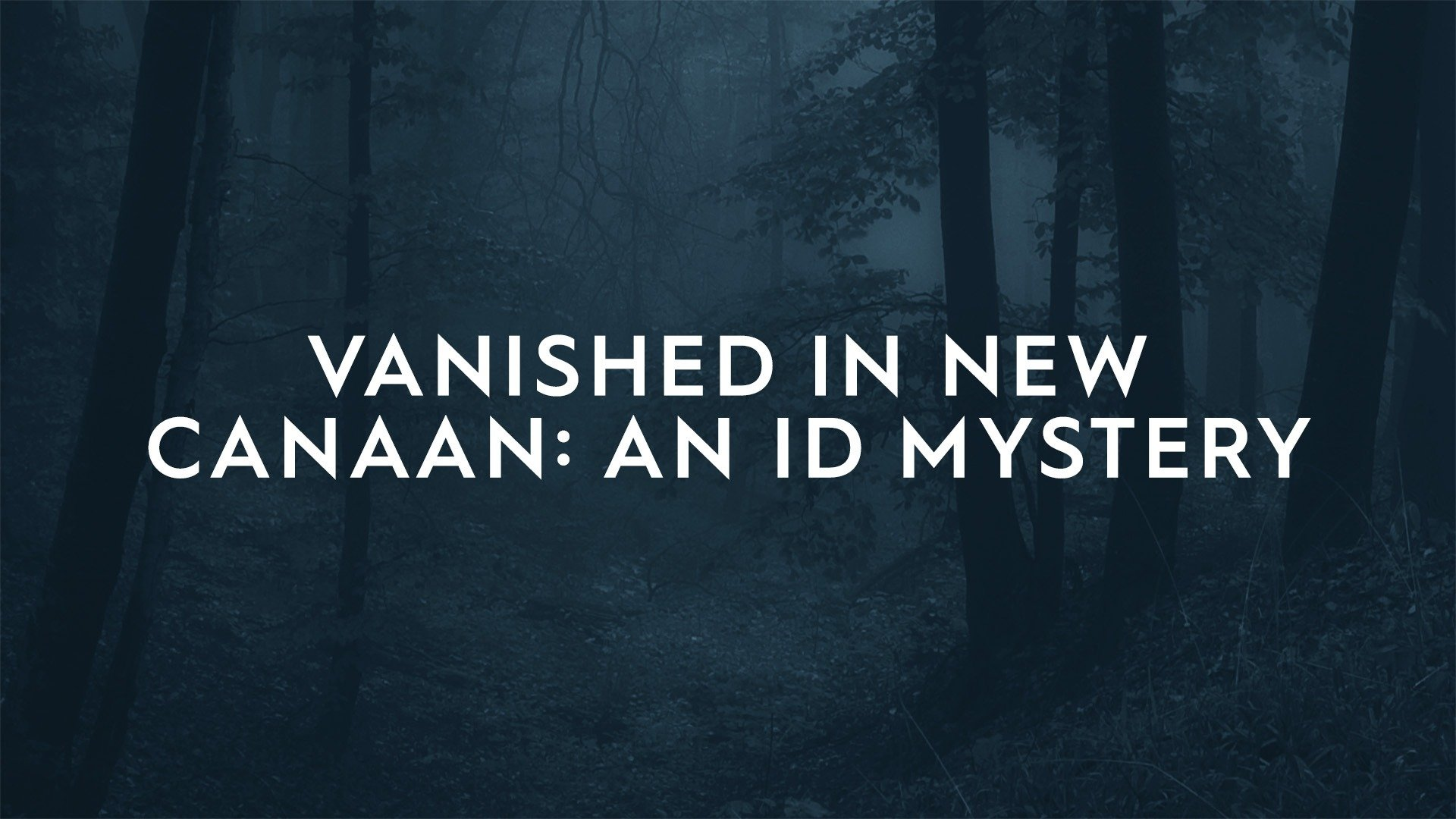 Vanished in New Canaan: An ID Mystery