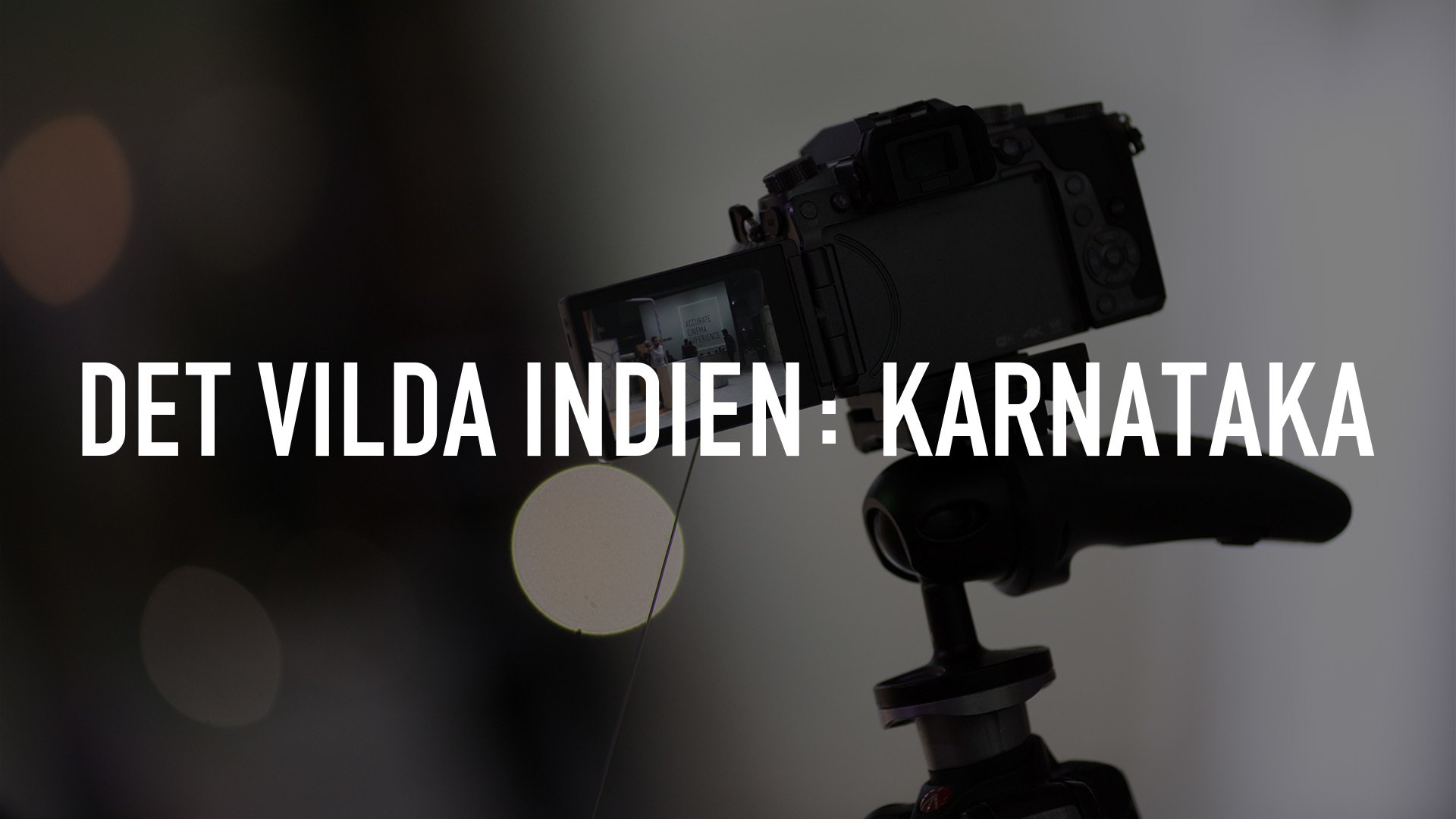 Det vilda Indien: Karnataka