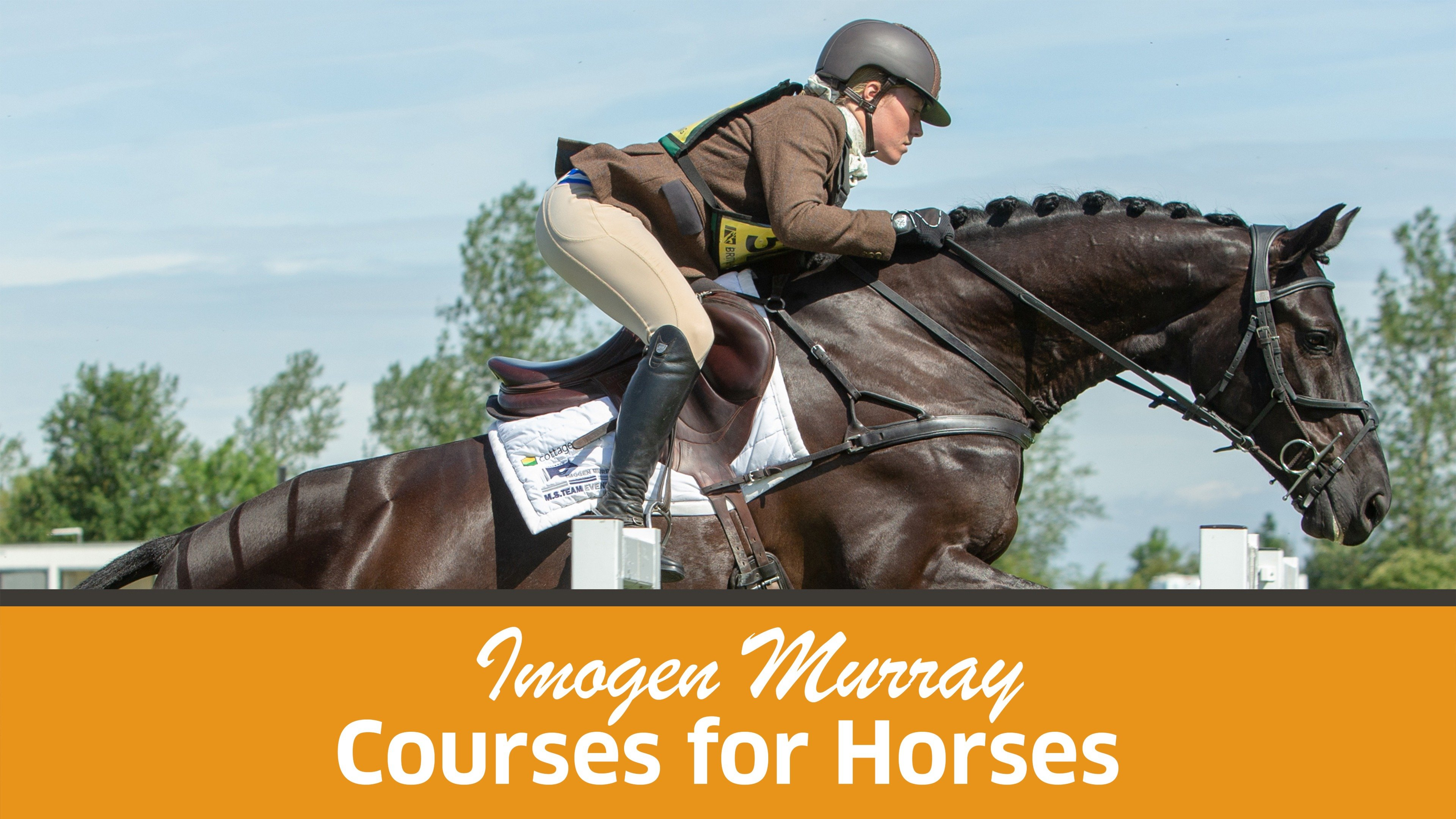 Imogen Murray: Courses for Horses