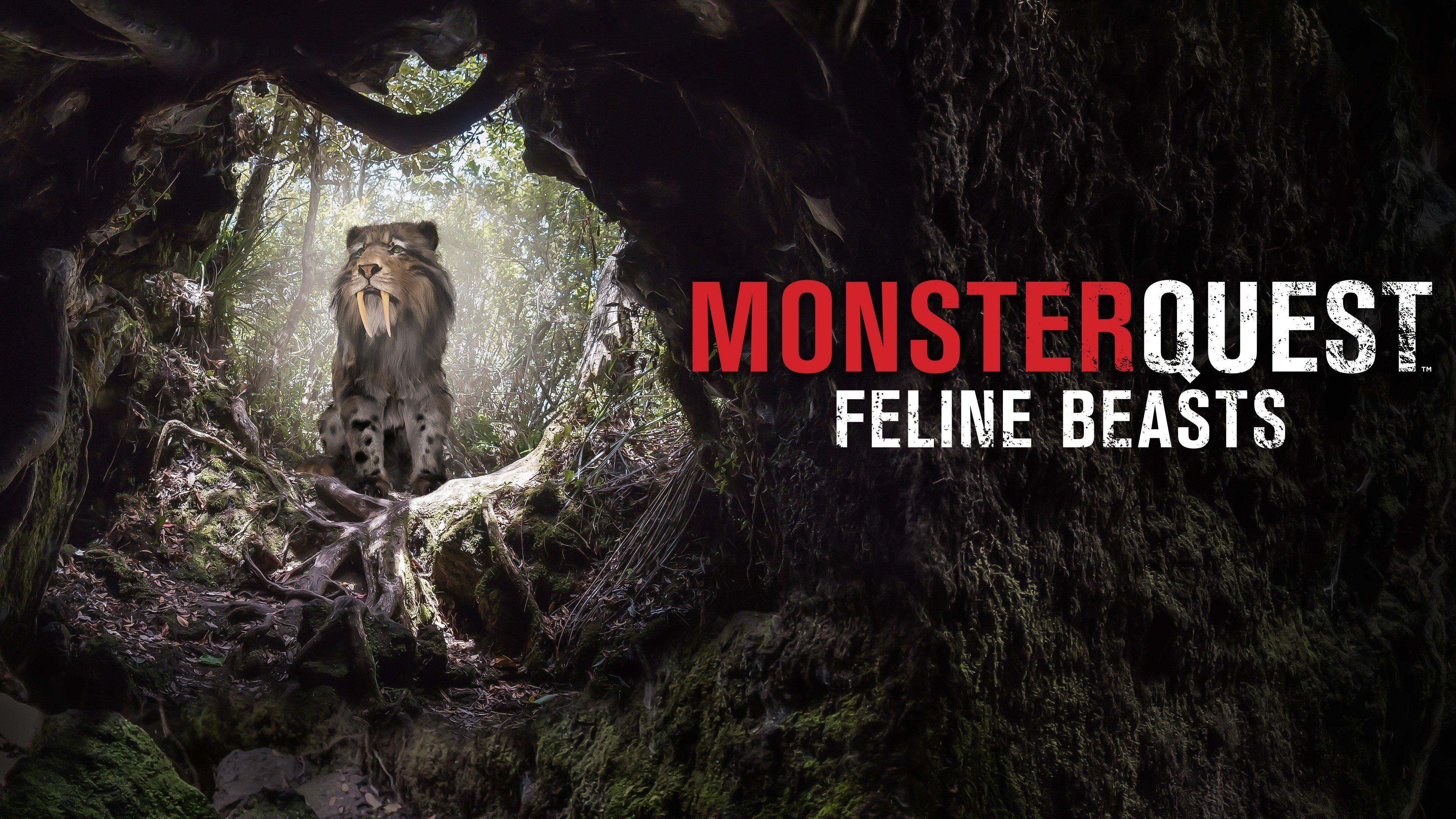 MonsterQuest: Feline Beasts