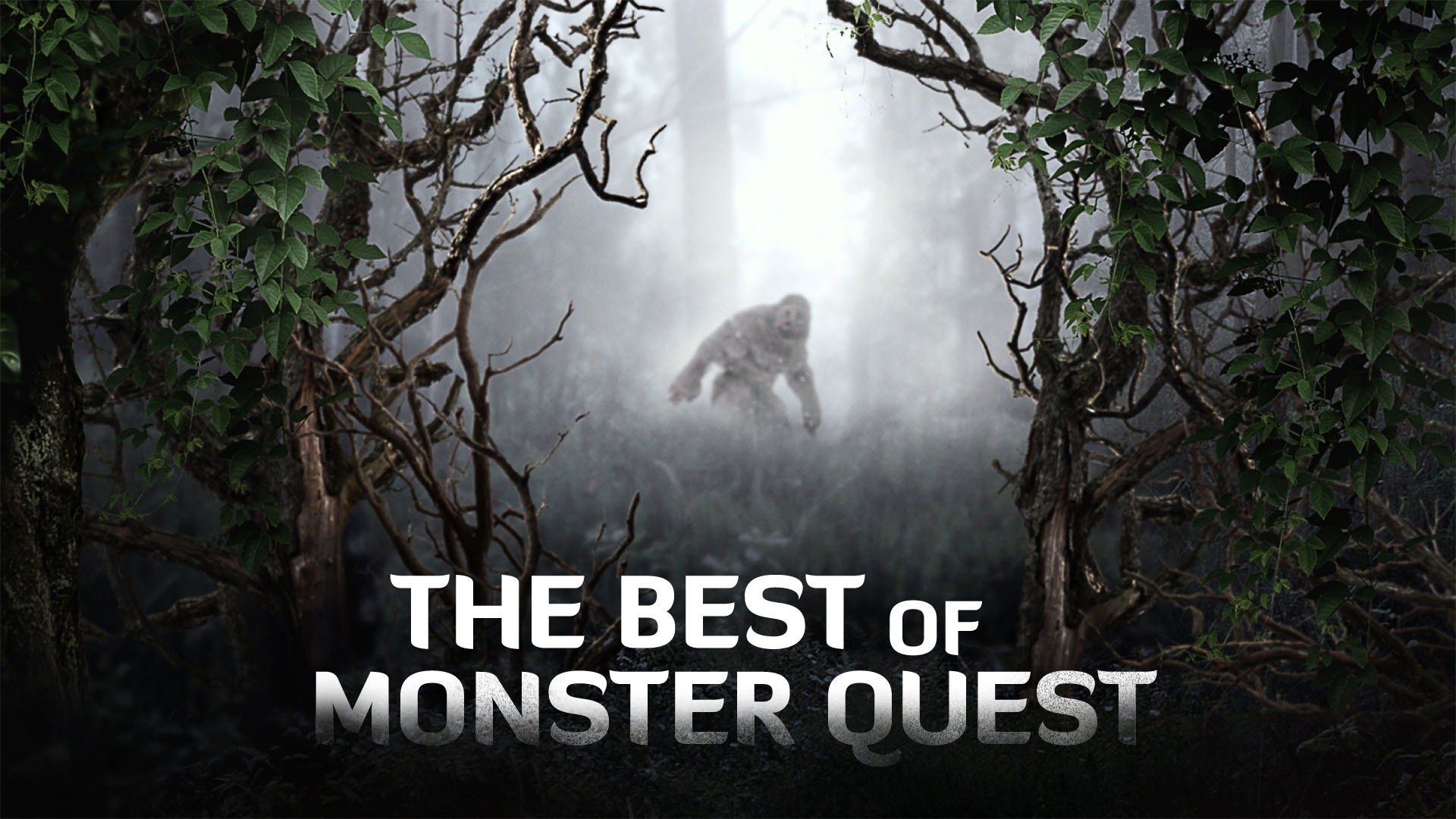 The Best of Monster Quest