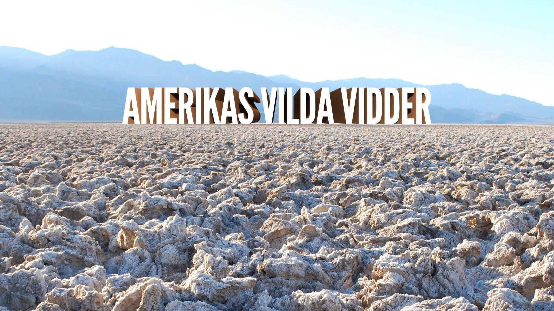 Amerikas vilda vidder