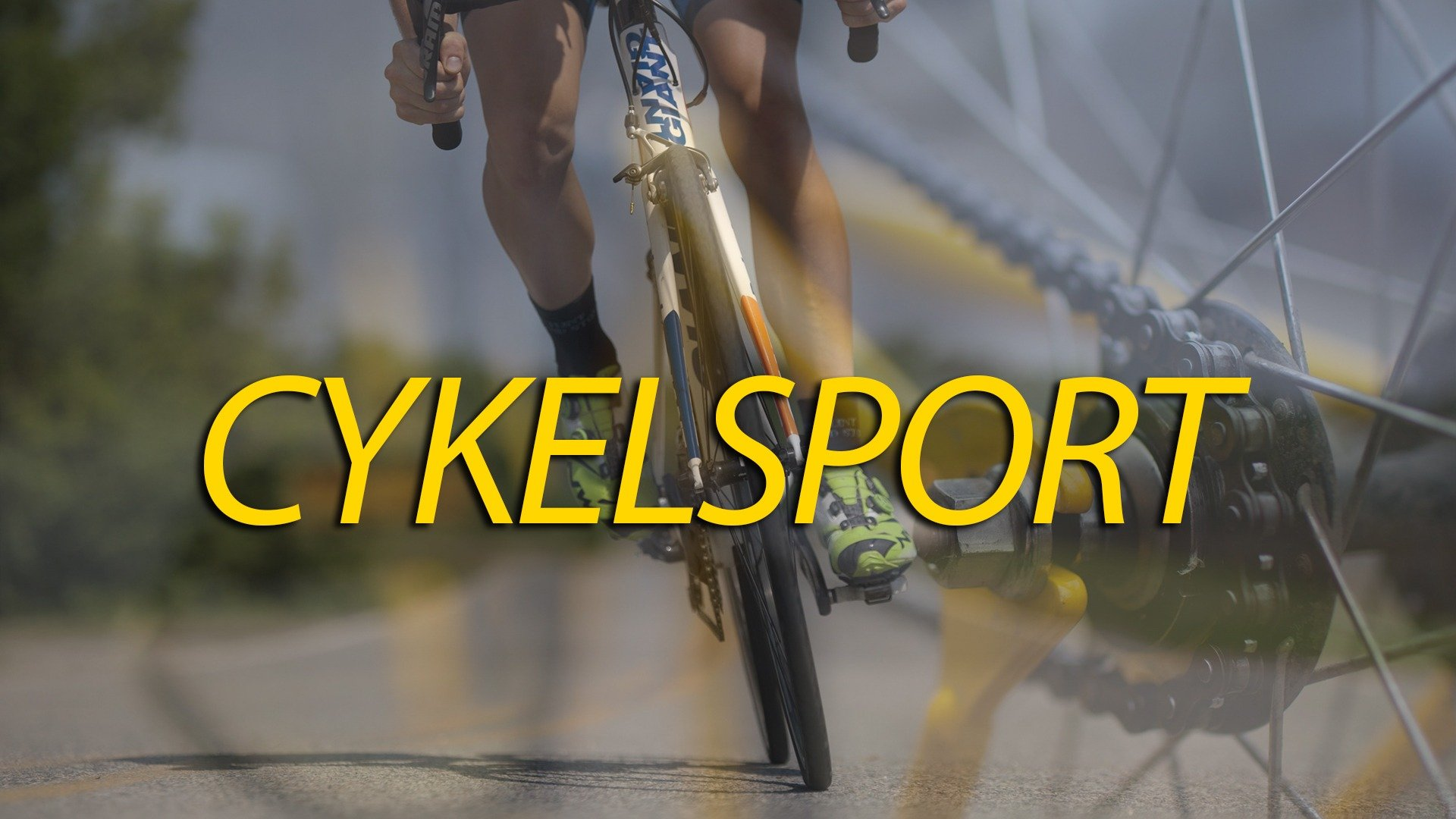 Cykelsport