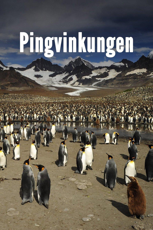 Pingvinkungen